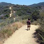 Phil Leacock Memorial Trail