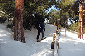 Skinning up the trail