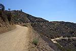 Mount Hollywood Trailhead